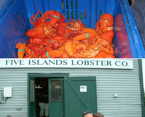 restaurants by water maine boating tours